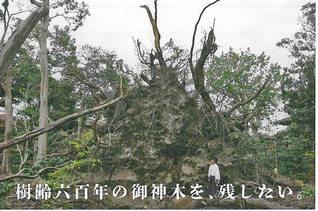 泉穴師神社がクラウドファンディングで寄付を募集中